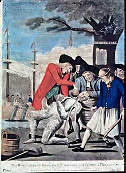 The Stamp Act Protests